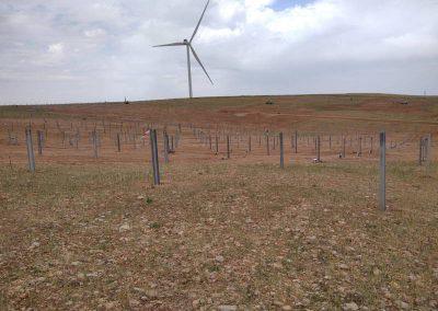 TekSolar_Montesol Solar Park
